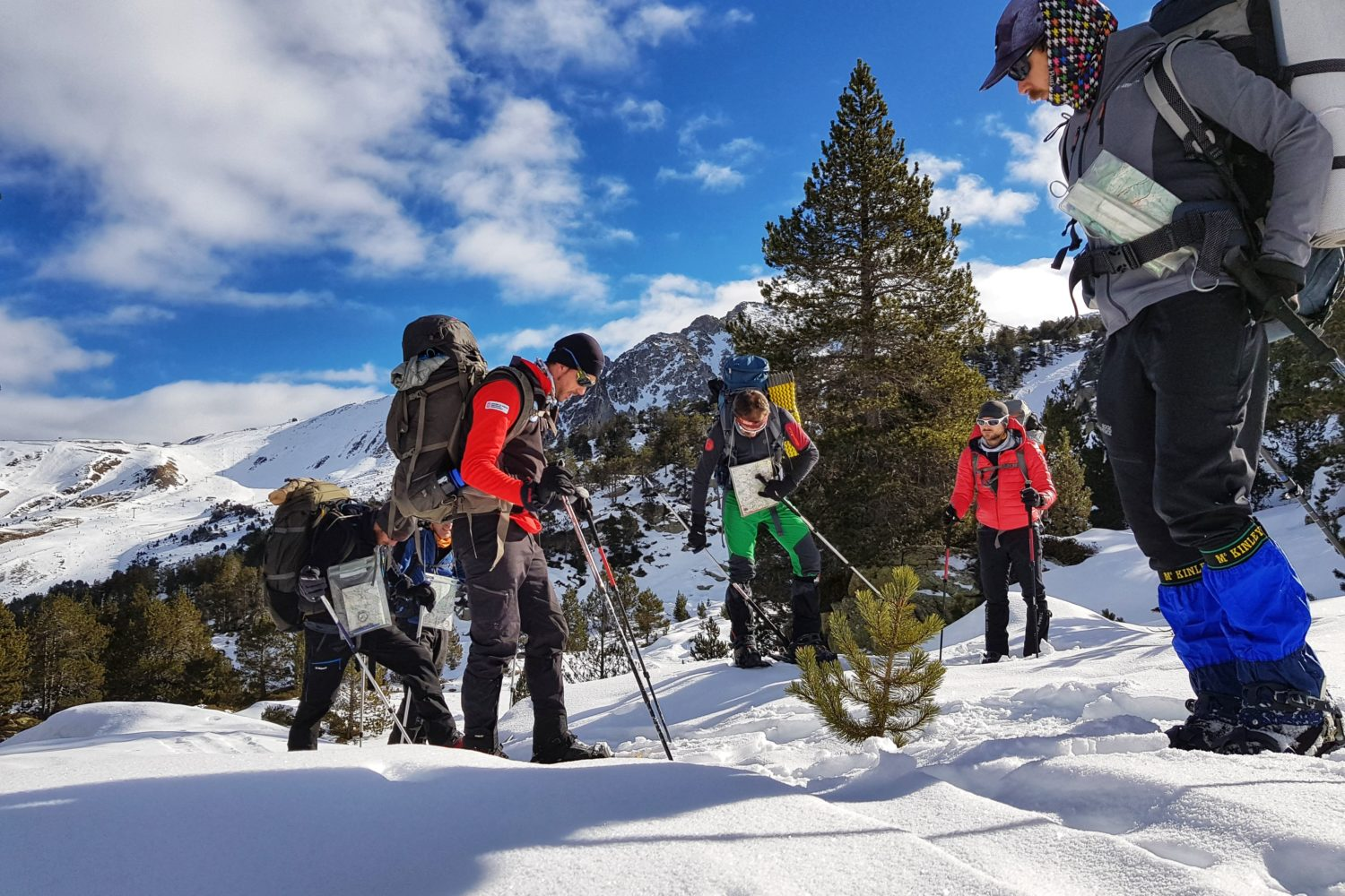 Exploring the snow layers on our small group snowshoeing tour in the Pyrenees