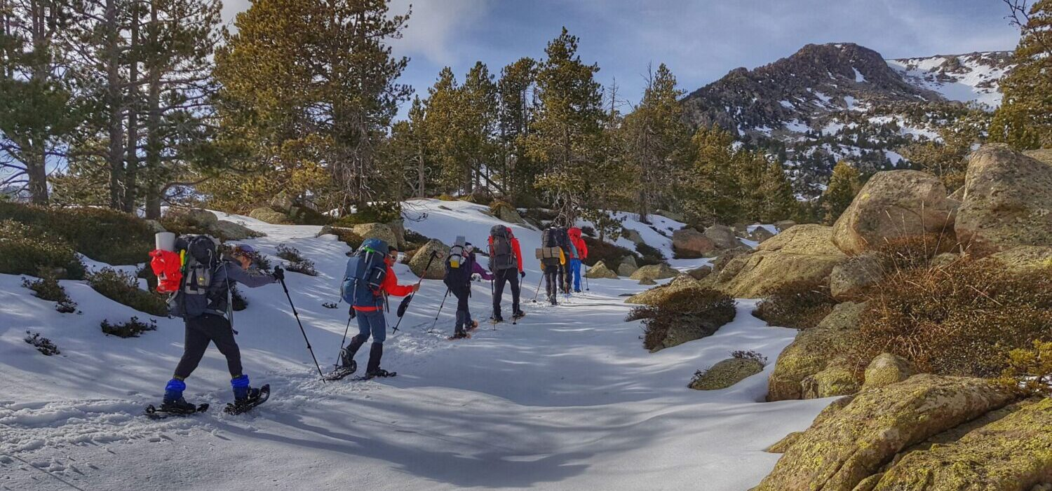 Snowshoeing tours in the Pyrenees