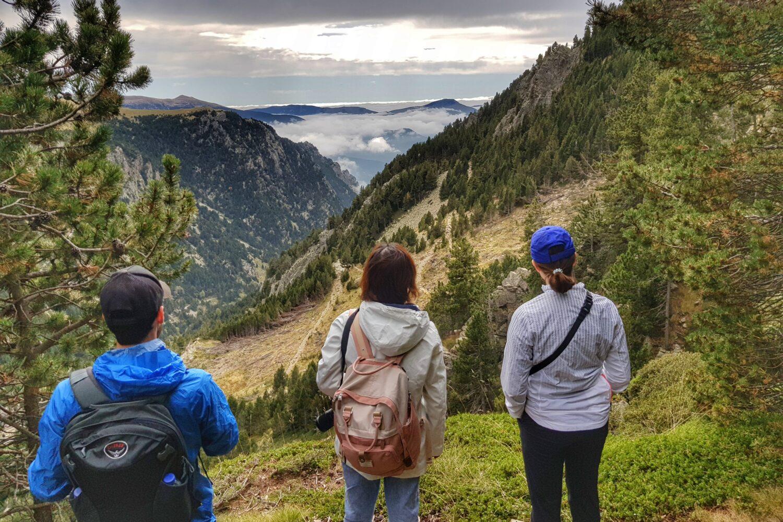 Views and wildlife in Vall de Nuria